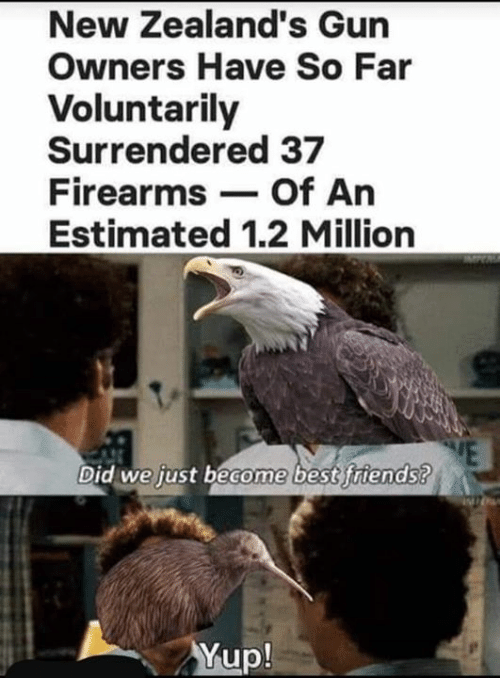 Friends, Memes, and Best: New Zealand's Gun  Owners Have So Far  Voluntarily  Surrendered 37  Firearms Of An  Estimated 1.2 Million  Did we just become best friends?  Yup!