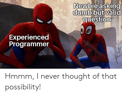 Dumb, Never, and Thought: Newbie asking  dumb but valid  question  Experienced  Programmer Hmmm, I never thought of that possibility!