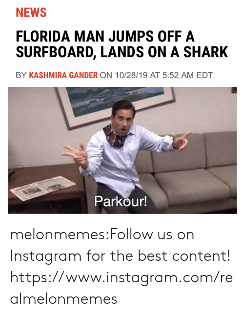 Florida Man, Instagram, and News: NEWS  FLORIDA MAN JUMPS OFF A  SURFBOARD, LANDS ON A SHARK  BY KASHMIRA GANDER ON 10/28/19 AT 5:52 AM EDT  Parkour! melonmemes:Follow us on Instagram for the best content! https://www.instagram.com/realmelonmemes