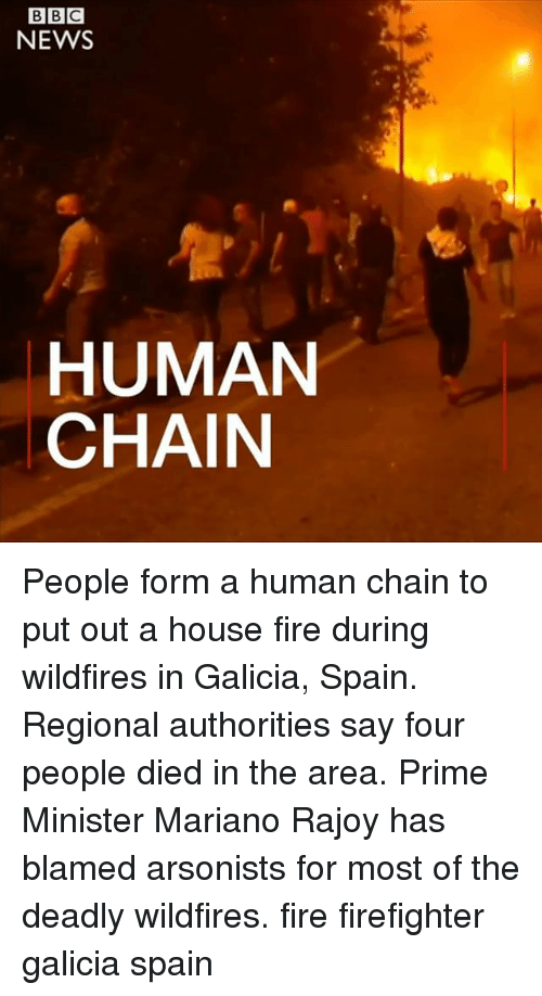 Fire, Memes, and News: NEWS  HUMAN  CHAIN People form a human chain to put out a house fire during wildfires in Galicia, Spain. Regional authorities say four people died in the area. Prime Minister Mariano Rajoy has blamed arsonists for most of the deadly wildfires. fire firefighter galicia spain