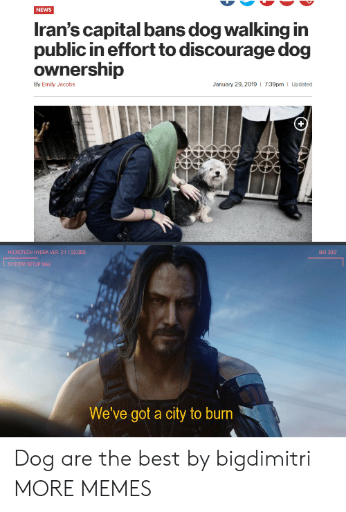 Dank, Memes, and News: NEWS  Iran's capital bans dog walking in  public in effort to discourage dog  ownership  7:39pm | Updated  By Emily Jacobs  January 29, 2019  MICROTECH HYORA VER. 2.1: 22.003  BIO 30:2  SYSTEM SETUP NAV  We've got a city to burn Dog are the best by bigdimitri MORE MEMES