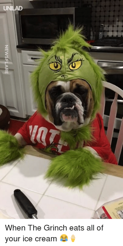Dank, The Grinch, and Ice Cream: NEWSFLARE When The Grinch eats all of your ice cream 😂🍦