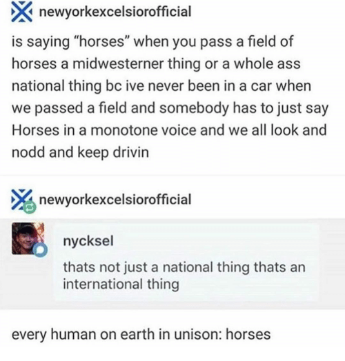 "Ass, Horses, and Earth: newyorkexcelsiorofficial  is saying ""horses"" when you pass a field of  horses a midwesterner thing or a whole ass  national thing bc ive never been in a car when  we passed a field and somebody has to just say  Horses in a monotone voice and we all look and  nodd and keep drivin  newyorkexcelsiorofficial  nycksel  thats not just a national thing thats an  international thing  every human on earth in unison: horses"