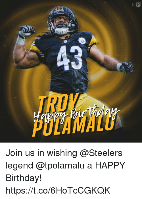 Birthday, Memes, and Nfl: NFL Join us in wishing @Steelers legend @tpolamalu a HAPPY Birthday! https://t.co/6HoTcCGKQK