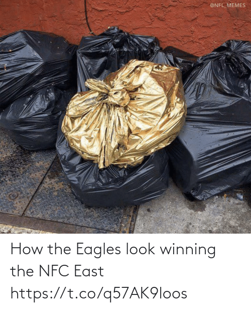 Philadelphia Eagles, Football, and Memes: @NFL_MEMES How the Eagles look winning the NFC East https://t.co/q57AK9loos