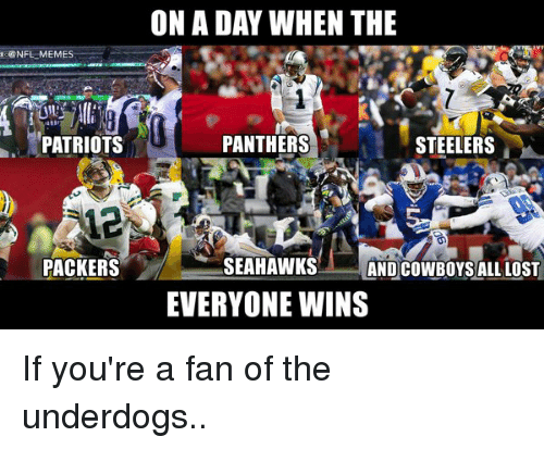 Panthers, Seahawks, and Steelers: NFL MEMES  PATRIOTS  PACKERS  ON A DAY WHEN THE  PANTHERS  STEELERS  SEAHAWKS  ANDCOWBOYSALL LOST  EVERYONE WINS If you're a fan of the underdogs..