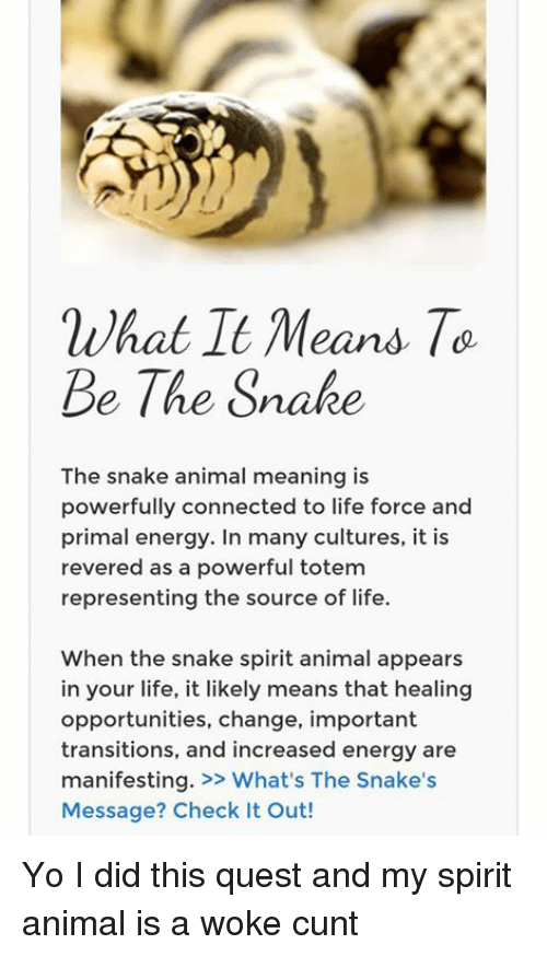 Ni Hat Tt Means to Be the Snake the Snake Animal Meaning Is