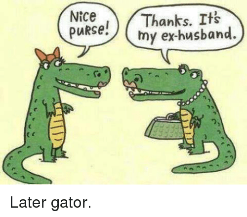 Image result for later gator