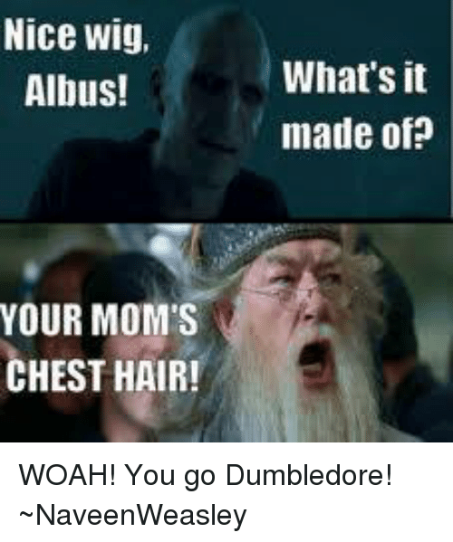 nice wig albus your moms chest hair whats it made 7849934 nice wig albus! your mom's chest hair! what's it made of woah! you,Dumbledore Meme