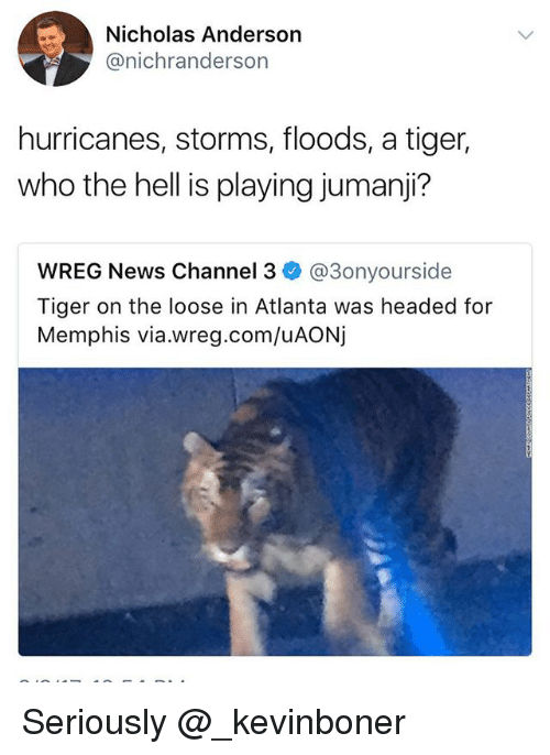 Funny, Meme, and News: Nicholas Anderson  @nichranderson  hurricanes, storms, floods, a tiger,  who the hell is playing jumanji?  WREG News Channel 3 @3onyourside  Tiger on the loose in Atlanta was headed for  Memphis via.wreg.com/uAONj Seriously @_kevinboner