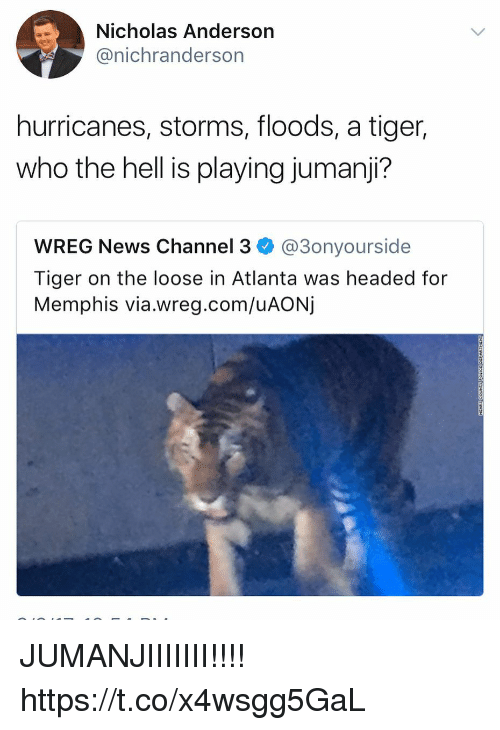 Funny, News, and Tiger: Nicholas Anderson  @nichranderson  hurricanes, storms, floods, a tiger,  who the hell is playing jumanji?  WREG News Channel 3 @3onyourside  Tiger on the loose in Atlanta was headed for  Memphis via.wreg.com/uAONj JUMANJIIIIIII!!!! https://t.co/x4wsgg5GaL