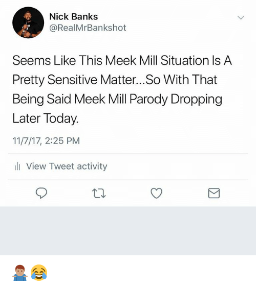 Meek Mill, Memes, and Banks: Nick Banks  @RealMrBankshot  Seems Like This Meek Mill Situation Is A  Pretty Sensitive Matter... So With That  Being Said Meek Mill Parody Dropping  Later Today.  11/7/17, 2:25 PM  l View Tweet activity 🤷🏽‍♂️😂