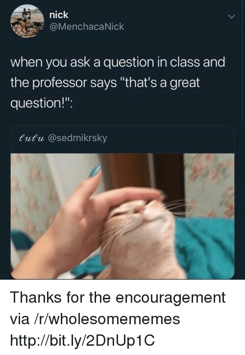 "Http, Nick, and Ask: nick  @MenchacaNick  when you ask a question in class and  the professor says ""that's a great  question!"".  tutu @sedmikrsky Thanks for the encouragement via /r/wholesomememes http://bit.ly/2DnUp1C"