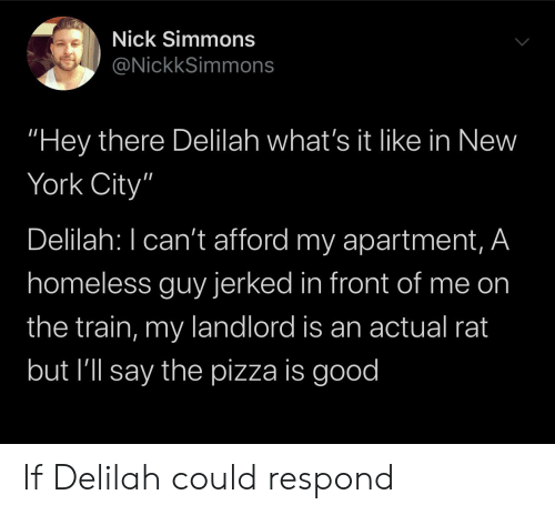 """Homeless, New York, and Pizza: Nick Simmons  @NickkSimmons  """"Hey there Delilah what's it like in New  York City""""  Delilah: I can't afford my apartment, A  homeless guy jerked in front of me on  the train, my landlord is an actual rat  but I'll say the pizza is good If Delilah could respond"""