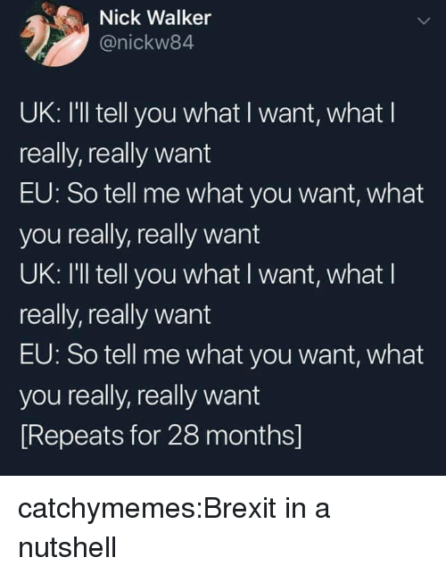 Target, Tumblr, and Blog: Nick Walker  @nickw84  UK: I'll tell you what I want, what l  really, really want  EU: So tell me what you want, what  you really, really want  UK: I'll tell you what I want, what l  really, really want  EU: So tell me what you want, what  you really, really want  Repeats for 28 months] catchymemes:Brexit in a nutshell