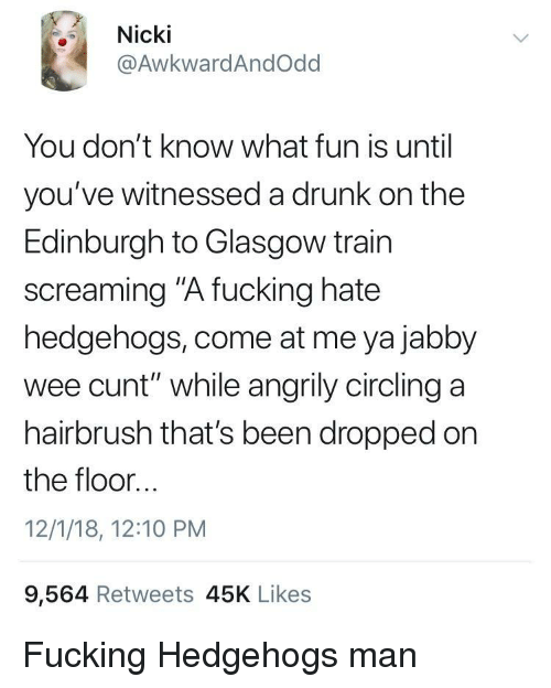 "Drunk, Fucking, and Wee: Nicki  @AwkwardAndOdd  You don't know what fun is until  you've witnessed a drunk on the  Edinburgh to Glasgow train  screaming ""A fucking hate  hedgehogs, come at me ya jabby  wee cunt"" while angrily circling a  hairbrush that's been dropped on  the floor...  12/1/18, 12:10 PM  9,564 Retweets 45K Likes Fucking Hedgehogs man"