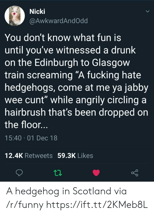 "Drunk, Fucking, and Funny: Nicki  @AwkwardAndOdd  You don't know what fun is  until you've witnessed a drunk  on the Edinburgh to Glasgow  train screaming ""A fucking hate  hedgehogs, come at me ya jabby  wee cunt"" while angrily circling a  hairbrush that's been dropped on  the floor  15:40 01 Dec 18  12.4K Retweets 59.3K Likes A hedgehog in Scotland via /r/funny https://ift.tt/2KMeb8L"