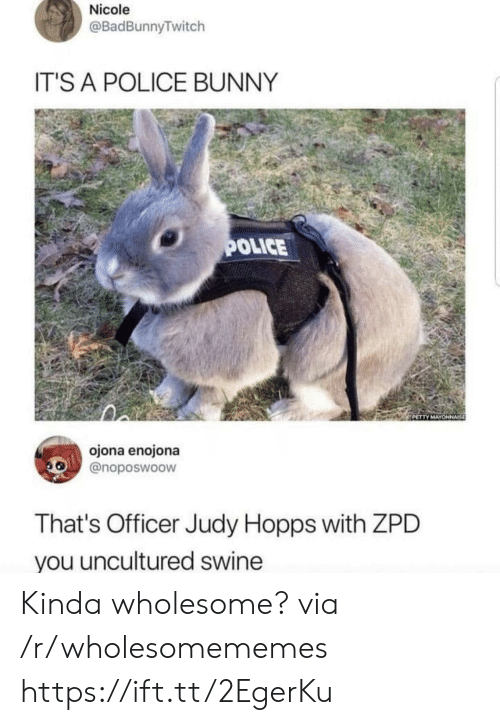 Police, Wholesome, and Bunny: Nicole  @BadBunnyTwitch  IT'S A POLICE BUNNY  OLICE  ojona enojona  @noposwoow  That's Officer Judy Hopps with ZPD  you uncultured swine Kinda wholesome? via /r/wholesomememes https://ift.tt/2EgerKu