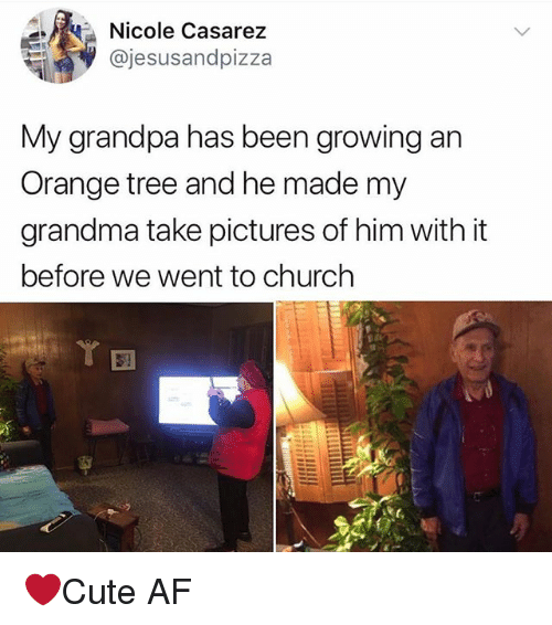 Af, Church, and Grandma: Nicole Casarez  @jesusandpizza  My grandpa has been growing an  Orange tree and he made my  grandma take pictures of him with it  before we Went to church ❤️Cute AF