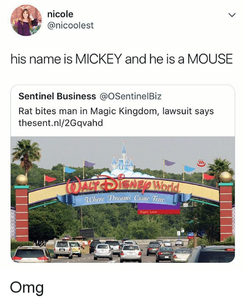 Memes, Omg, and True: nicole  @nicoolest  his name is MICKEY and he is a MOUSE  Sentinel Business @OSentinelBiz  Rat bites man in Magic Kingdom, lawsuit says  thesent.nl/2Gqvaho  where Dreams Come True Omg