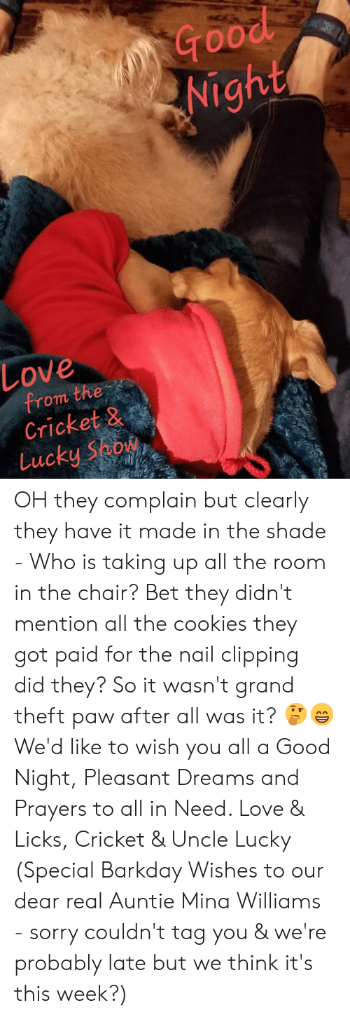 Cookies, Love, and Memes: Nigh  19  Love  from the  Cricket 8  Lucky Show OH they complain but clearly they have it made in the shade - Who is taking up all the room in the chair?  Bet they didn't mention all the cookies they got paid for the nail clipping did they?  So it wasn't grand theft paw after all was it? 🤔😁 We'd like to wish you all a Good Night, Pleasant Dreams and Prayers to all in Need.  Love & Licks, Cricket & Uncle Lucky  (Special Barkday Wishes to our dear real Auntie Mina Williams - sorry couldn't tag you & we're probably late but we think it's this week?)
