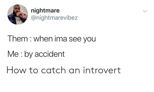 Introvert, How To, and How: nightmare  @nightmarevibez  Them when ima see you  Me by accident How to catch an introvert
