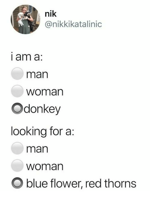 what am i looking for in a woman