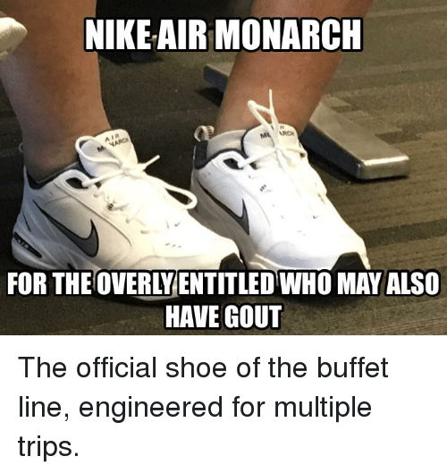 8301e939974 NIKEAIR MONARCH I R FOR THEOVERLYENTITLED WHO MAY ALSO HAVE GOUT ...