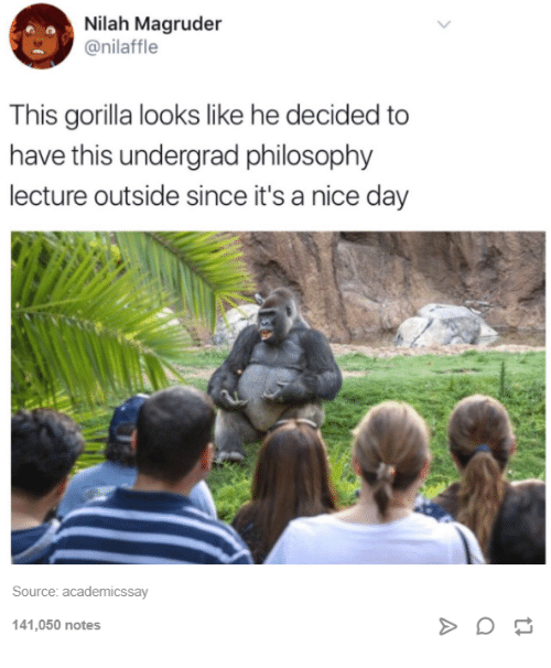 Philosophy, Humans of Tumblr, and Nice: Nilah Magruder  @nilaffle  This gorilla looks like he decided to  have this undergrad philosophy  lecture outside since it's a nice day  Source: academicssay  141,050 notes