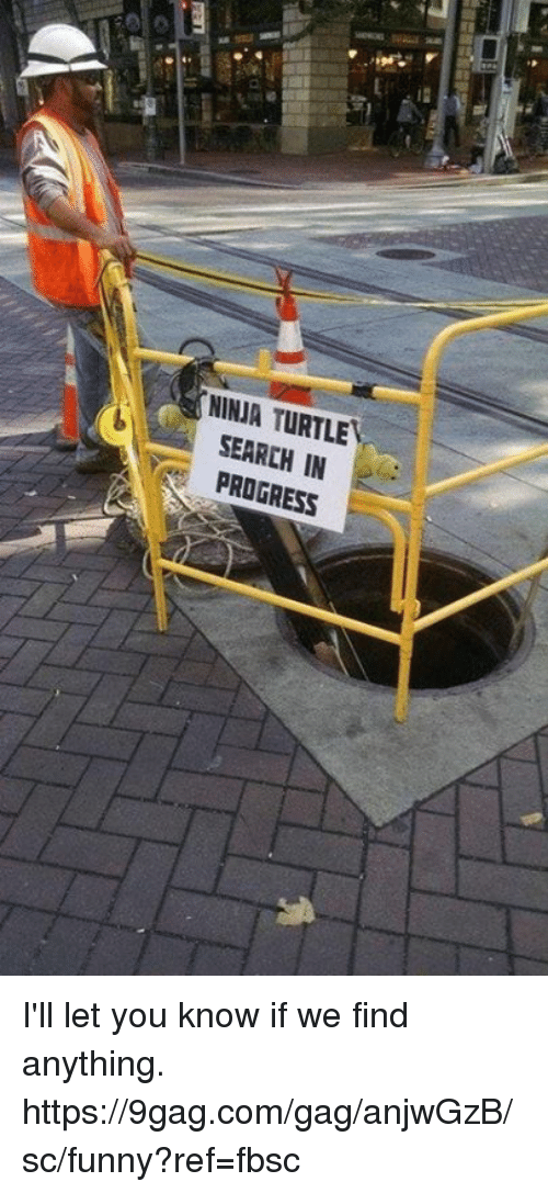 9gag, Dank, and Funny: NINJA TURTLE  SEARCH IN  PROGRESS I'll let you know if we find anything.  https://9gag.com/gag/anjwGzB/sc/funny?ref=fbsc