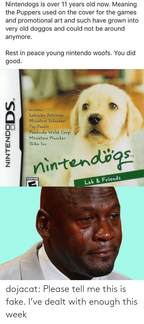 Corgi, Fake, and Friends: Nintendogs is over 11 years old now. Meaning  the Puppers used on the cover for the games  and promotional art and such have grown into  very old doggos and could not be around  anymore.  Rest in peace young nintendo woofs. You did  good.  Includes:  Labrador Retriever  Miniature SchnAuzer  Toy Poodle  Pembroke Welsh Corgi  Miniature Pinscher  Skiba Inu  nintendögs.  EVERYONE  Lab & Friends  NINTENDO  DODS. dojacat:  Please tell me this is fake. I've dealt with enough this week