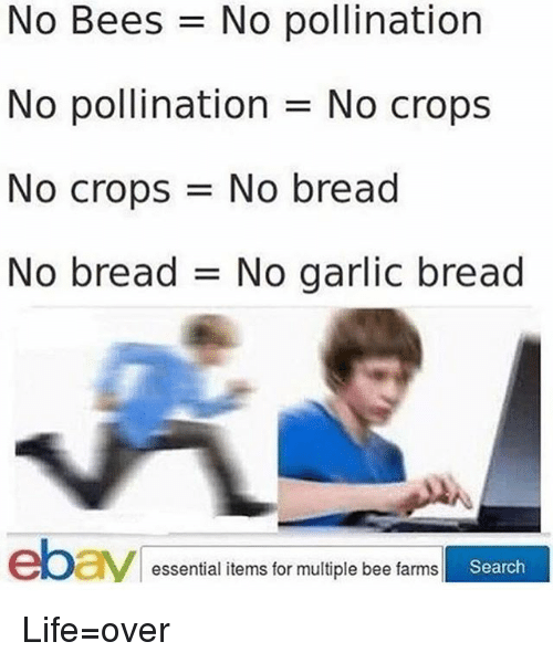Life, Memes, and Search: No Bees No pollination  No pollination No crops  No crops = No bread  No bread No garlic bread  essential items for multiple bee farms  Search Life=over