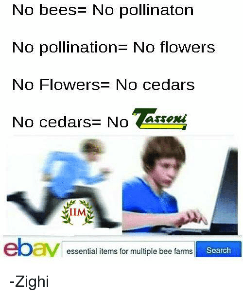 Memes, Flowers, and Search: No bees- No pollinaton  No pollinationE No flowers  No Flowers: No cedars  No cedars= NoAi  No cedars No assex  IIM  essential items for multiple bee farms  Search -Zighi