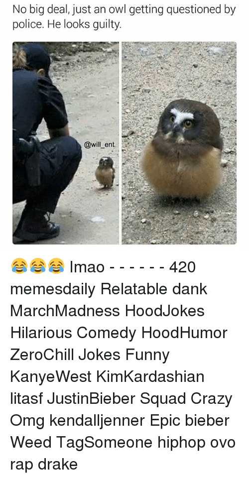 Memes, 🤖, and Weeds: No big deal, just an owl getting questioned by  police. He looks guilty.  will ent 😂😂😂 Imao - - - - - - 420 memesdaily Relatable dank MarchMadness HoodJokes Hilarious Comedy HoodHumor ZeroChill Jokes Funny KanyeWest KimKardashian litasf JustinBieber Squad Crazy Omg kendalljenner Epic bieber Weed TagSomeone hiphop ovo rap drake