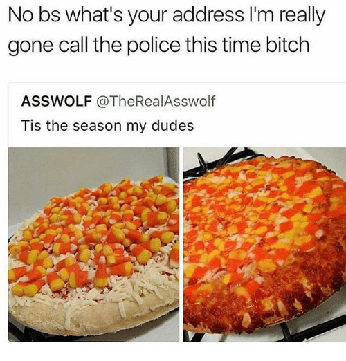 Bitch, Memes, and Police: No bs what's your address I'm really  gone call the police this time bitch  ASSWOLF @TheRealAsswolf  Tis the season my dudes