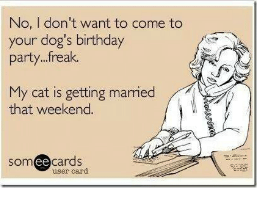 Birthday Memes And Someecards No I Dont Want To Come