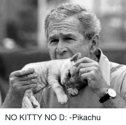 no kitty no d pikachu kitties meme on me me