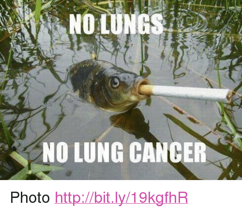 """Cancer, Http, and Lung Cancer: NO LUNG CANCER <p>Photo <a href=""""http://bit.ly/19kgfhR"""">http://bit.ly/19kgfhR</a></p>"""