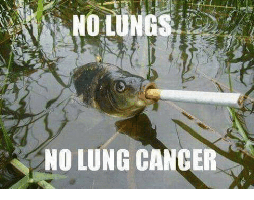 Cancer, Dank Memes, and Lung Cancer: NO LUNG CANCER