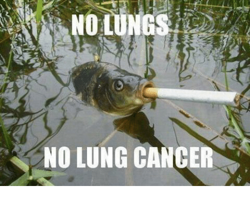 Memes, Cancer, and 🤖: NO LUNG CANCER
