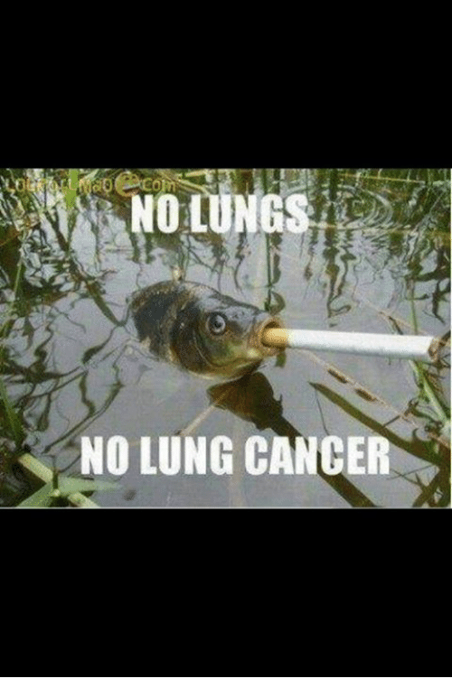 Memes, 🤖, and Lung Cancer: NO LUNG CANCER