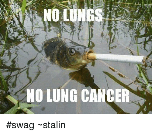 Memes, Swag, and 🤖: NO LUNG CANCER #swag  ~stalin