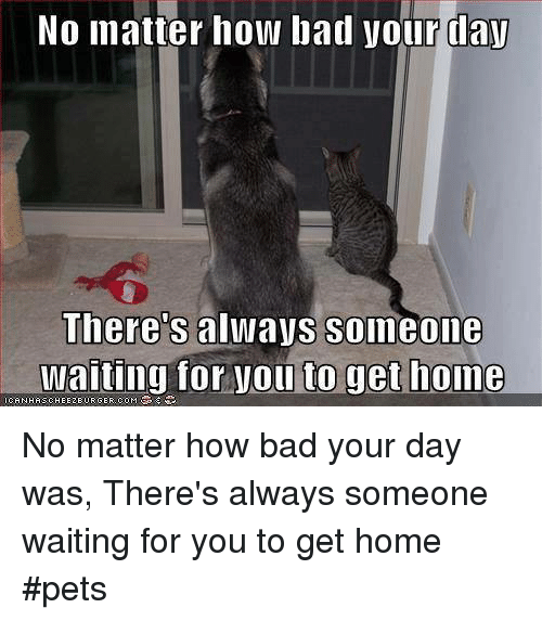 someone waiting home for me