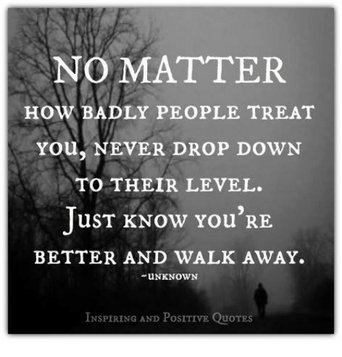 How People Treat You Quotes NO MATTER HoW BADLY PEOPLE TREAT You NEVER DROP DOWN TO THEIR  How People Treat You Quotes