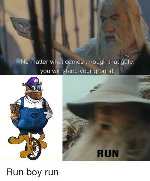 Run, Dank Memes, and Boy: No matter what comes through that gate,  you will stand your ground  RUN