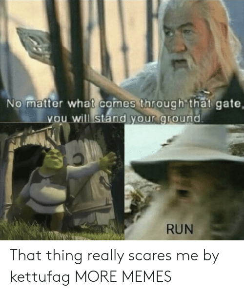 Dank, Memes, and Run: No matter what comes through that gate,  you will stand your ground  RUN That thing really scares me by kettufag MORE MEMES