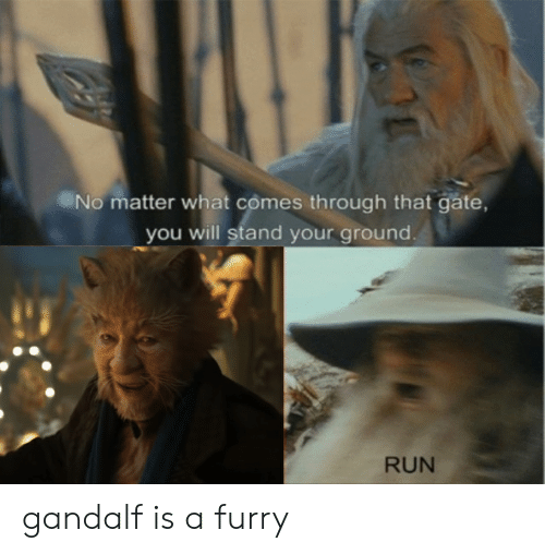 No Matter What Comes Through That Gate You Will Stand Your Ground Run Gandalf Is A Furry Gandalf Meme On Me Me