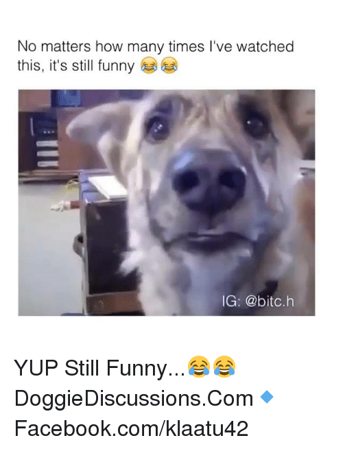 How Many Times, Memes, and 🤖: No matters how many times I've watched  this, it's still funny  IG: @bitc.h YUP Still Funny...😂😂  DoggieDiscussions.Com🔹Facebook.com/klaatu42