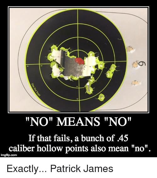 "Memes, Mean, and 🤖: ""NO"" MEANS ""NO""  If that fails, a bunch of 45  caliber hollow points also mean ""no"".  imgidip com Exactly...   Patrick James"