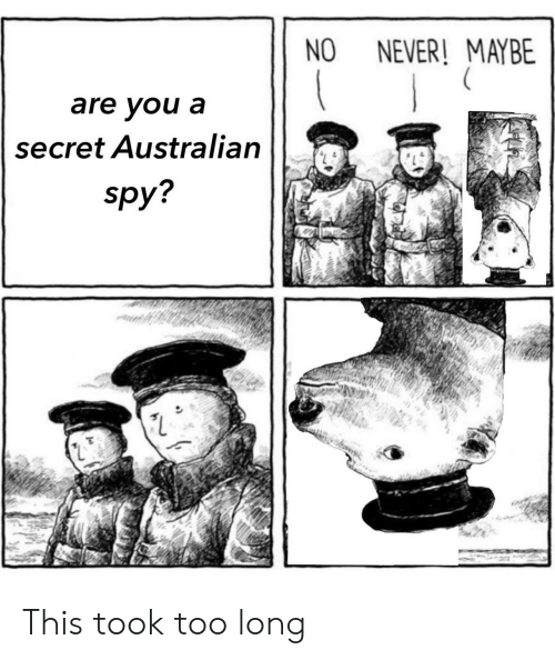 Never, Australian, and Spy: NO NEVER! MAYBE  are you a  secret Australian  spy This took too long